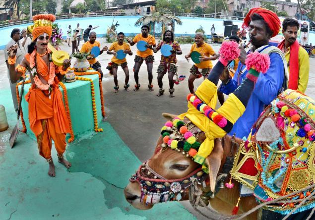festivals_Pongal